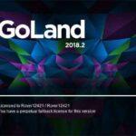 JetBrains GoLand İndir – Full 2020.1