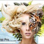 Photo Pos Pro Premium İndir – Full v3.71 Build 24