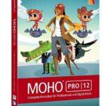 Smith Micro Moho Pro İndir – Full Win-Mac v13.0.2.610
