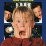 Evde Tek Başına 1-2-3-4-5 Boxset İndir – Türkçe Dublaj 720p