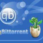 qBittorrent İndir – Full v4.3.4 – Türkçe Hızlı Torrent