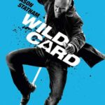 Son Oyun İndir Will Card – Türkçe Dublaj 1080p TR-EN
