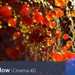 NextLimit RealFlow Cinema 4D Full v2.6.5.0095 İndir